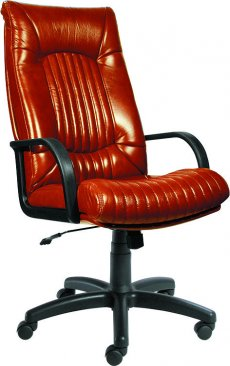 Фото - Кресло для руководителей Favorit